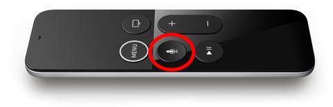 Apple Remote voice button
